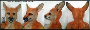 Red Roo Head Turnaround by Magpieb0nes