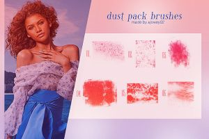 Dust Pack Brushes by xjowey02