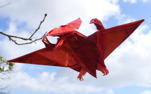 Pteranodon by Figuer