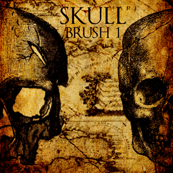 Skull 1 by minkmonk