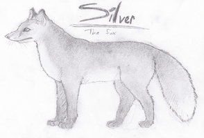 Silver by Spotted73
