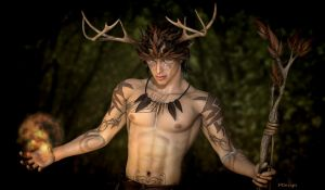 Lord of the Woods by P3DesignPromotions