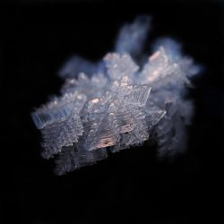 Crystalice V by Photopathica