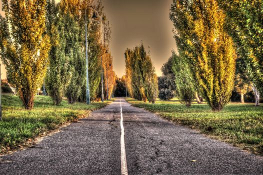 road HDR by Fwirll