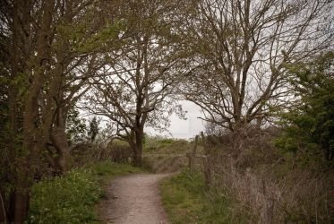 Another trail - Renesse by chalkwebdesign
