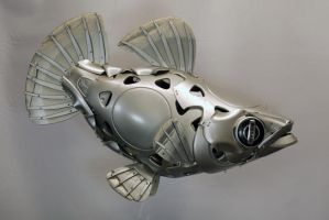 Platy by HubcapCreatures