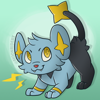 Playful shinx by MoonRiderx