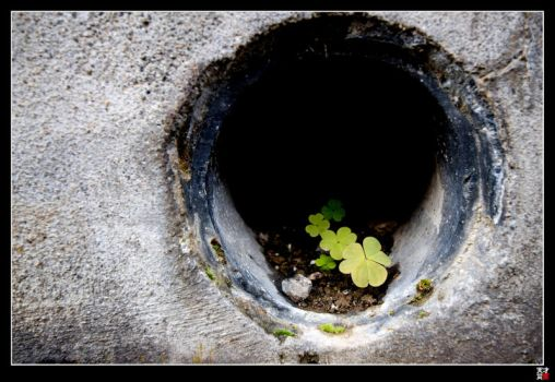 Nature in a Hole by tensai-riot