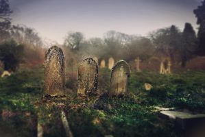 Southampton Old Cemetery by Ellceris