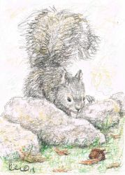 Just One More ACEO ATC by metasilk