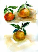 Tangerines-sketch by Joinerra