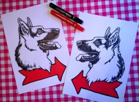 Dog Signs by Agaave