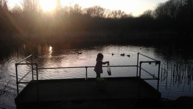 Daughter feeding the ducks at sunset. by GT-Orphan