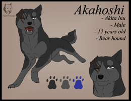 Akahoshi Ref Sheet by SabraeTrash