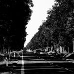Road 61 by silentmemoria