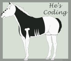 He's Coding by Lily-Pad-Stables
