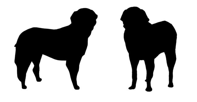 Golden Retriever Silhouette by xxx-TeddyBear-xxx