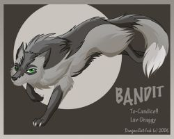 Bandit by DragonCat-Ink