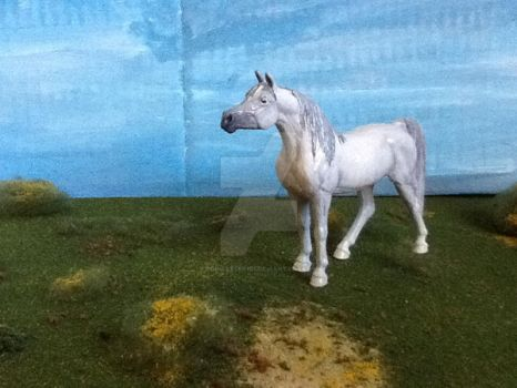Model horse custom arabian by popmaster101