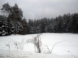 snow in poland II by MysteriousMaemi