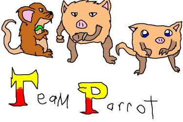 Team Parrot by seemycriitersss