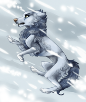 Polar warrior by Phoenix-Brul-Plum