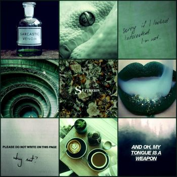 Slytherin Aesthetic by TheCrownOfWinter