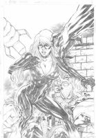 Black Cat and Spiderman by Fredbenes