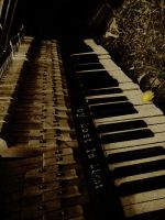 Music is stopped.Piano is dead by LostInLight666