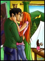 Harry and Ginny by lotjeoef