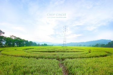 Berbah Crop Circle by cendhikaphoto