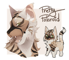 ADOPT | Auction | Pretty Polaroid by PastelMangoo