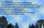 BEAUTIFUL FOREST POEM by Aim4Beauty