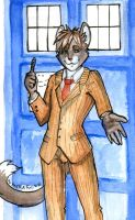Doctor who by HaSKA-LoWo