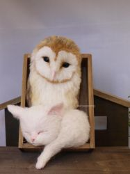 Owl and cat white ver. 1 by sheeps-wing