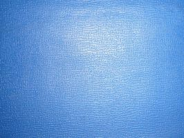 false leather - blue by allecca
