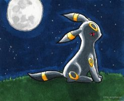#197 Umbreon (b) by little-ampharos