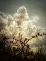 Clouds and thorns STOCK by needanewname