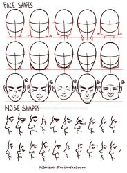 Face/Nose shapes reference by Kibbitzer