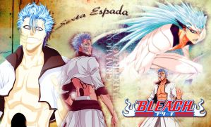 Grimmjow wallpaper by Ishily