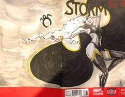 Storm Sketch cover by FWACATA
