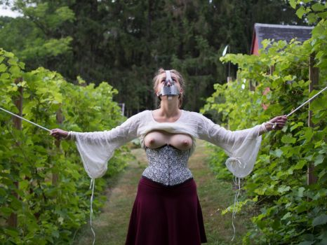 Tied and Gagged in the Vineyard by kinkykusco