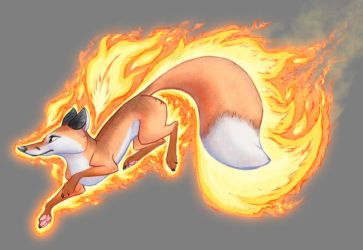 FireFox by Midsea