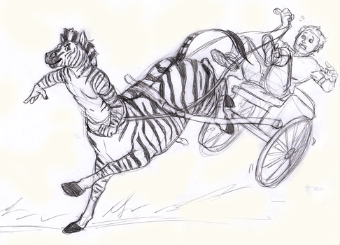 Don't mess with Zebras - Commission by Linda065cliva