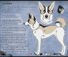 CharacterSheet - Strander by BlueHunter