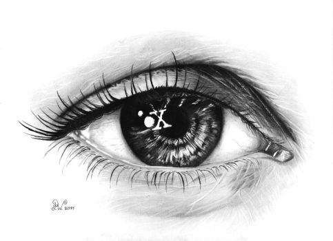 The x eye by Fynya