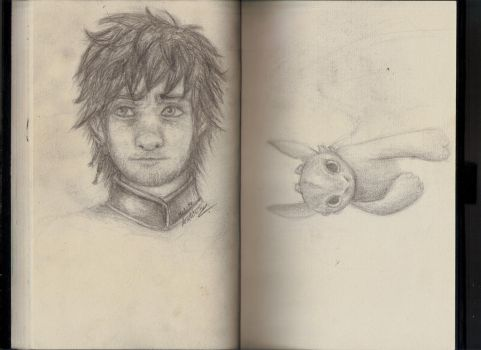 hiccup and toothless by minihumanoid