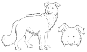 Free Border Collie Line Art by LeechLights on DeviantArt