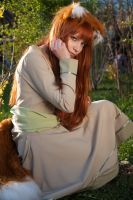 Spice and Wolf Holo by mchechenev