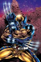 wolverine colors by Cristiano Cruz by CrisstianoCruz